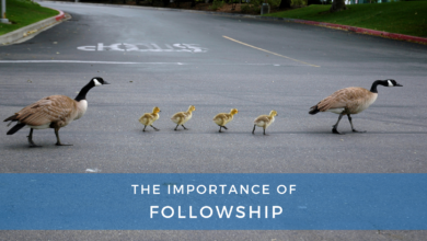 Photo of The Importance of Followship